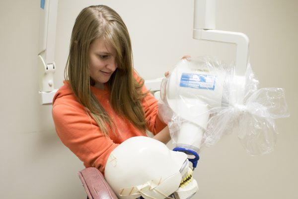 Ibmc Dental Assisting School Dental Assisting Program In Colorado